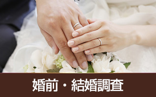 婚前・結婚調査